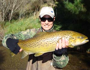 Trophy Brown Trout