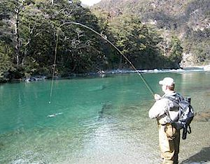 Ragitikei River - Clear water Big Fish....