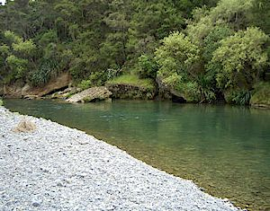 Nice water in the Hawkes Bay